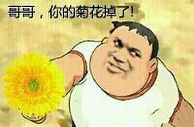 胖虎:哥哥,你的菊花掉了