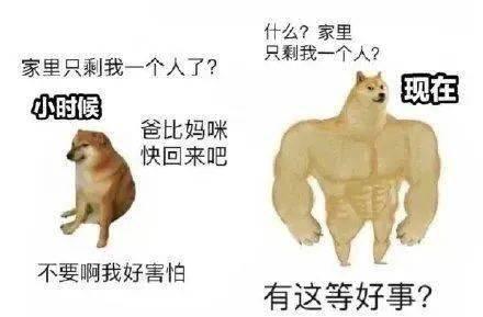 肌肉狗VS小废狗表情包_狗子对比
