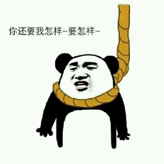 你还要我怎样,要怎样表情包_熊猫头上吊