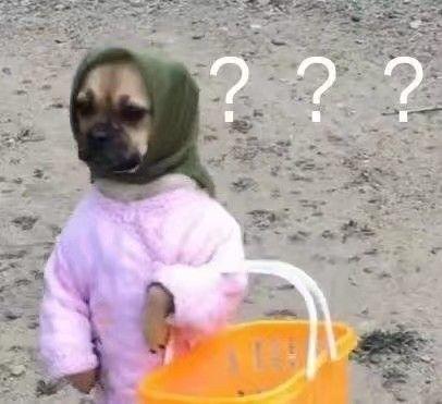 狗子包着头巾,拎着篮子买东西问号